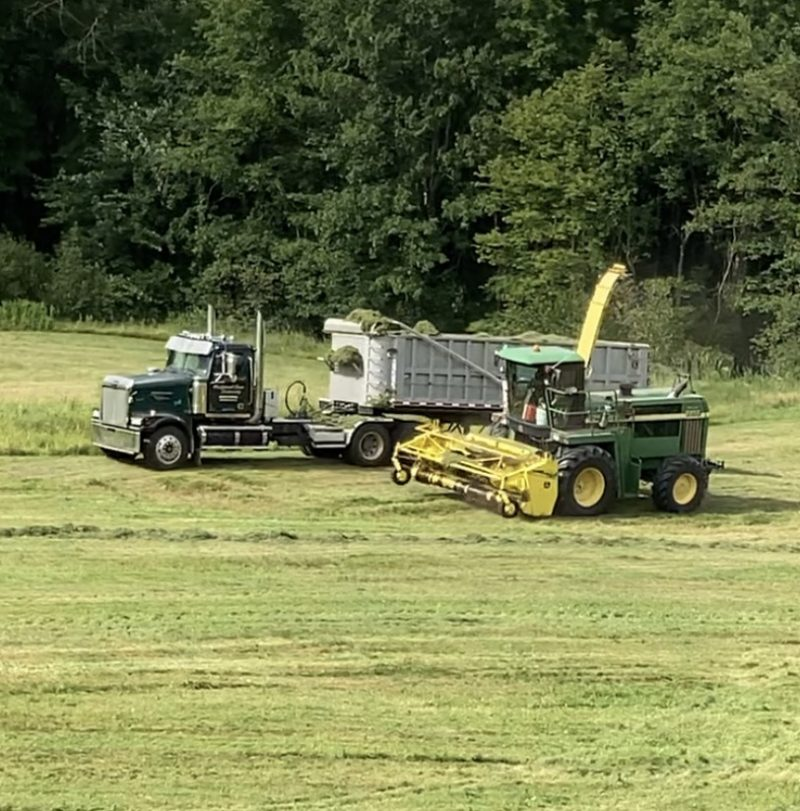 Haying Machine and Semi Trailer Truck in Field